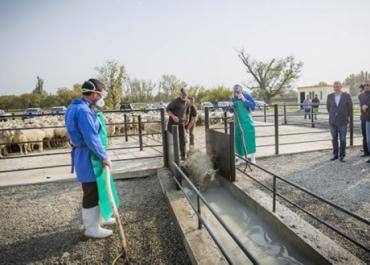 კახეთის რეგიონს გადასარეკი ტრასების ბიოუსაფრთხოების სამი პუნქტი მოემსახურება