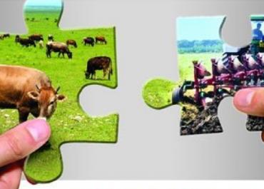 (ქარ) სასოფლო-სამეურნეო კოოპერატივების როლი სოფლის მეურნეობის განვითარებაში