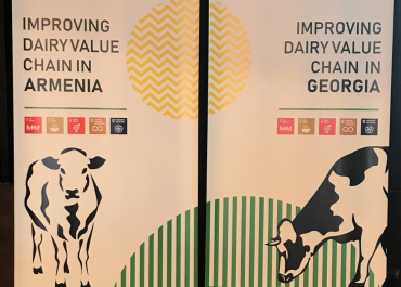 Business Case Study – Dairy Sector in Georgia