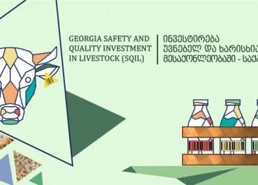 სასურსათო უსაფრთხოების სისტემები პანდემიის დროს – SQIL