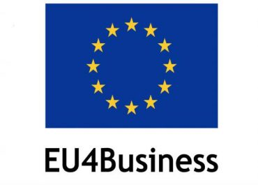 EU4Business პროექტები