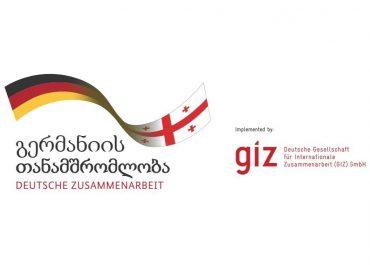 GIZ -ის პროექტები