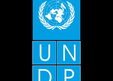 UNDP-ის პროექტები